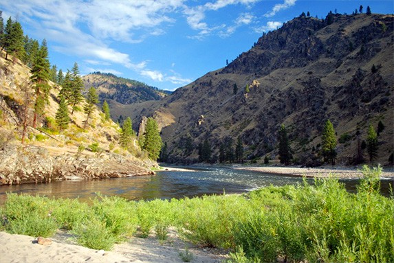 Salmon River Family Trips